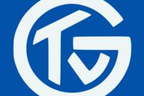 Wappen TV Großwallstadt | Bildquelle: Internet